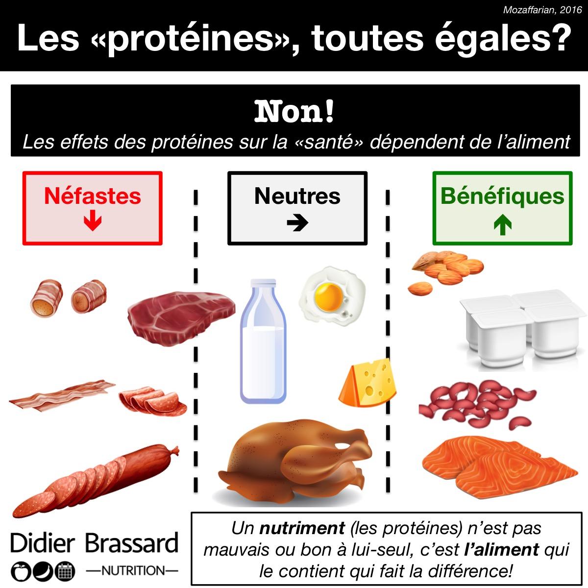4 4 tout savoir sur les prot ines danger - Produit riche en proteine ...