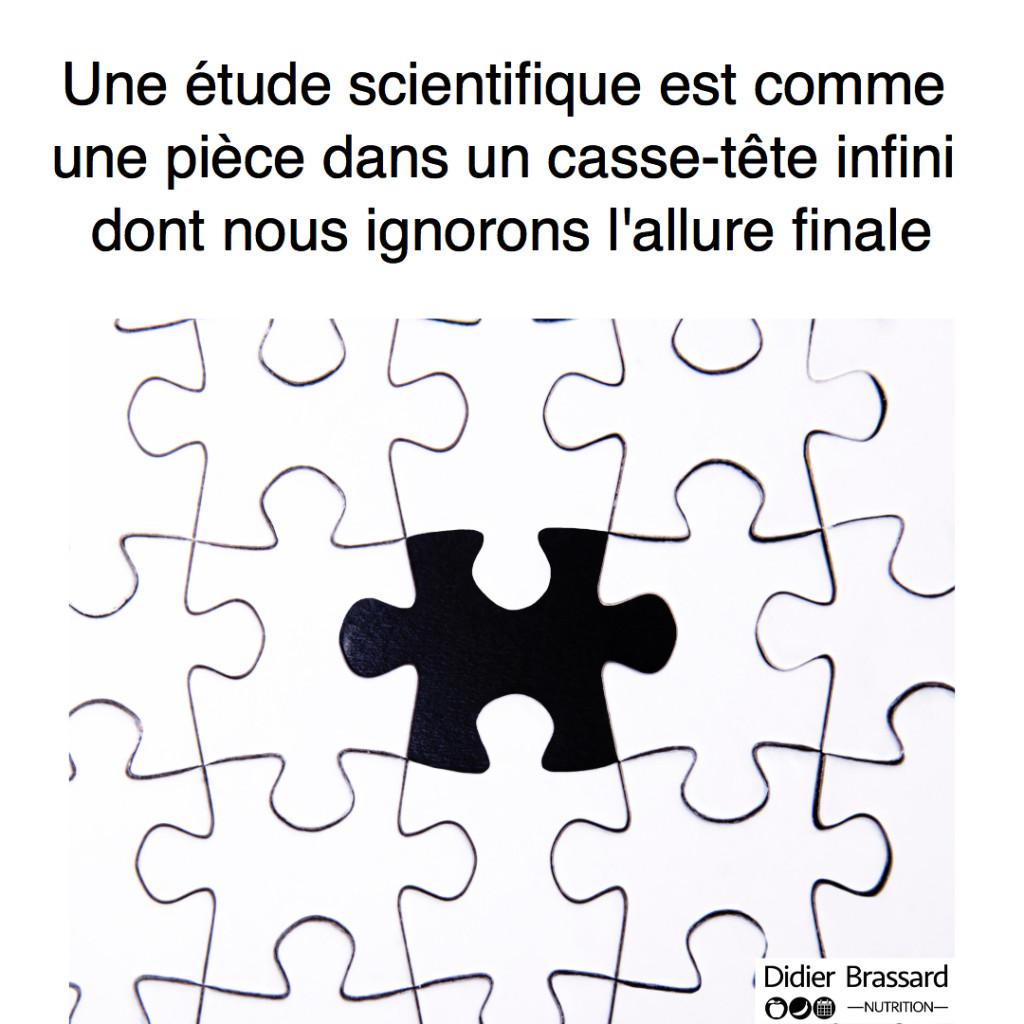 Puzzle_analogy